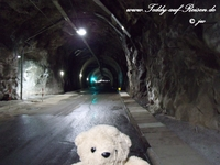 Teddy im Tunnel