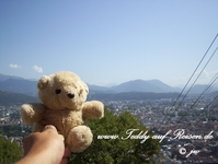 Teddy in Grenoble