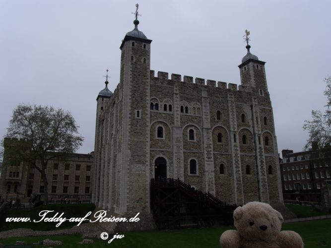 Teddy im Tower